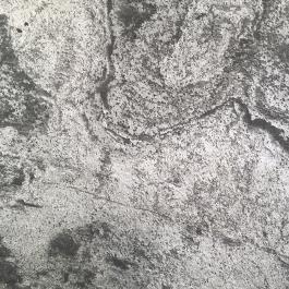 Tapisserie en feuille de pierre Silver Grey