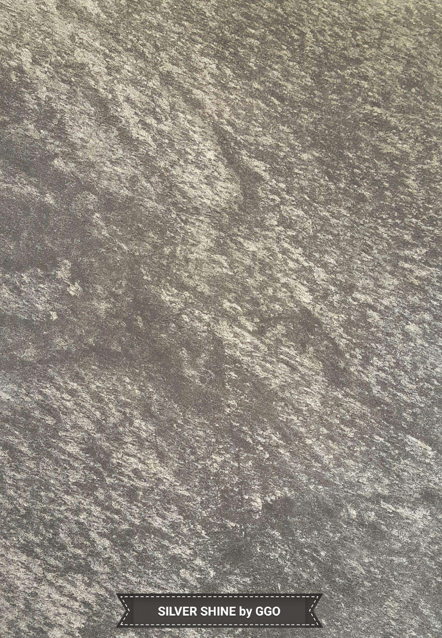 Feuille de pierre silver shine